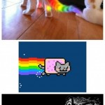 NYANCAT 1494241 460s v1 150x150 Culture   Nyan Cat
