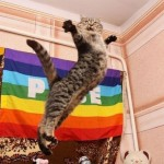 NYANCAT 577ot 150x150 Culture   Nyan Cat