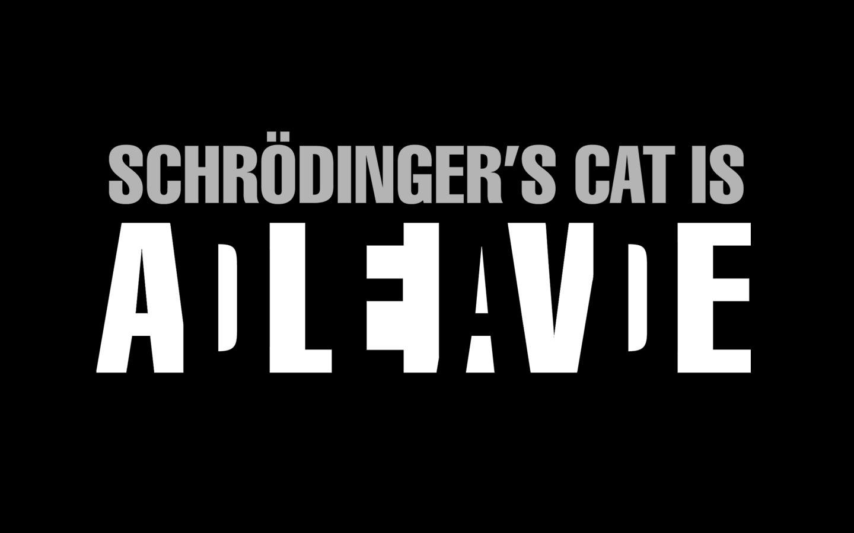 2013-semaine-41-schrodinger